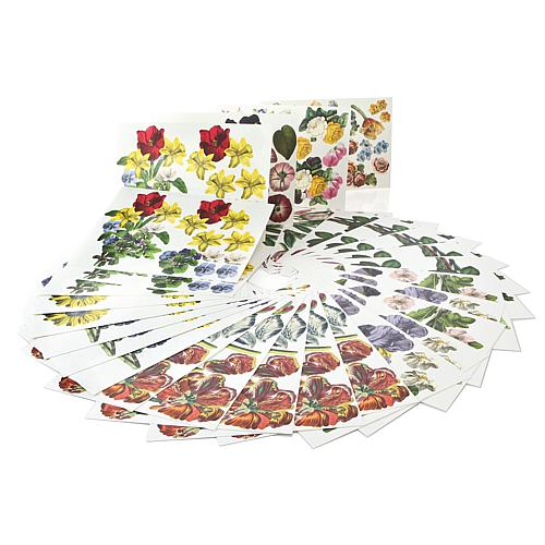 Beautiful Bouquets Floral Die-Cuts - 72-pack